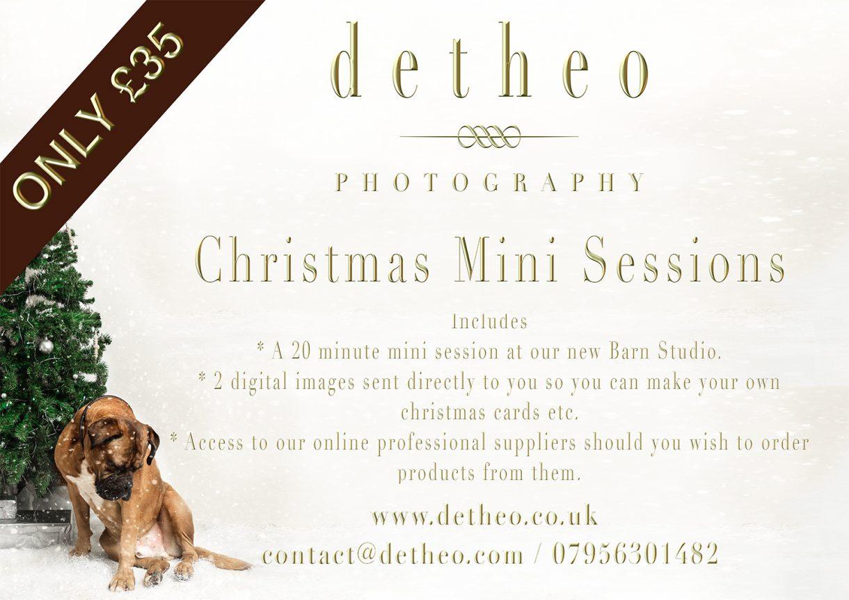 Christmas Mini Photoshoot offer Hertfordshire Essex Uk